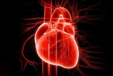 Le cardiopatie