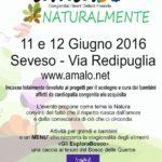 A5 amalo 2016-page-001